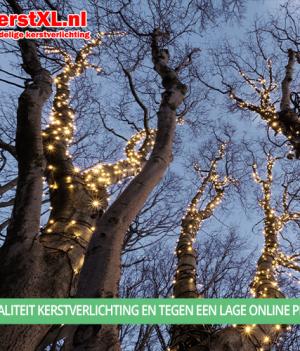 Mooie verlichte bomen