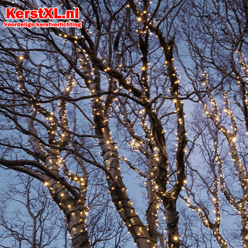 Verlichting bomen buiten